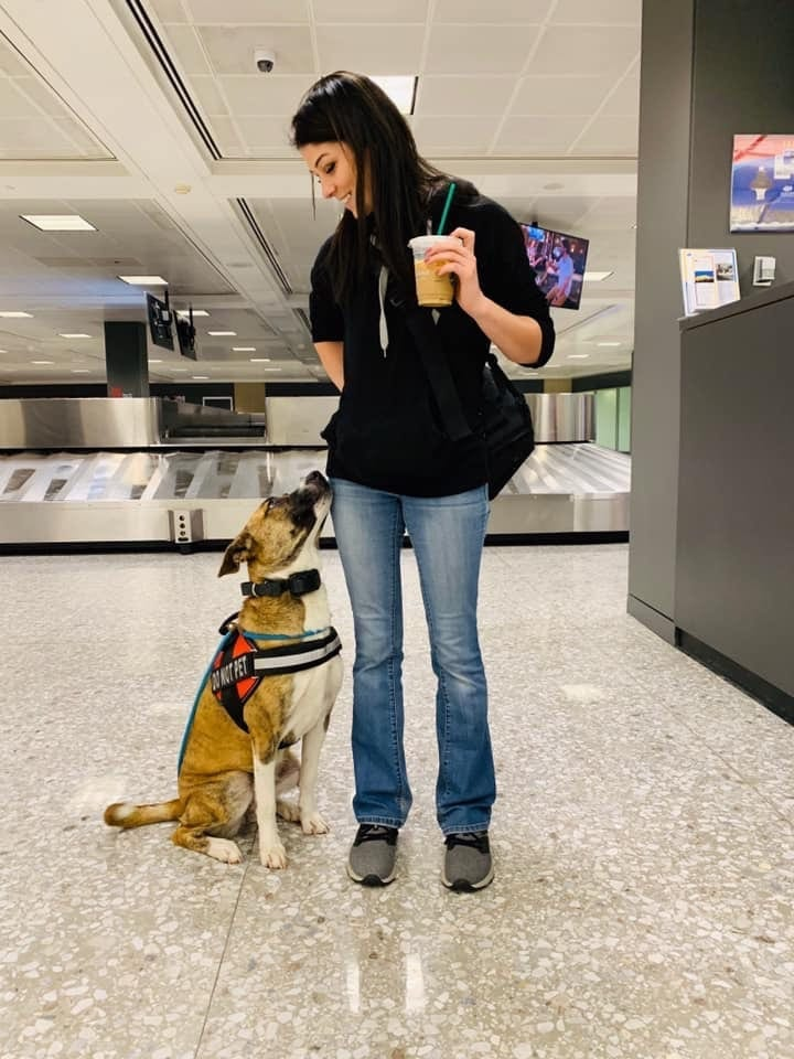 NoVA Dog Trainers Off Leash